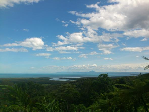 Cairns : un cyclone, une forêt et des poissons